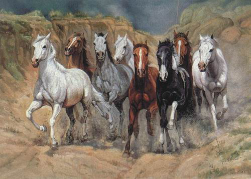 Dafen Oil Painting on canvas -horse001