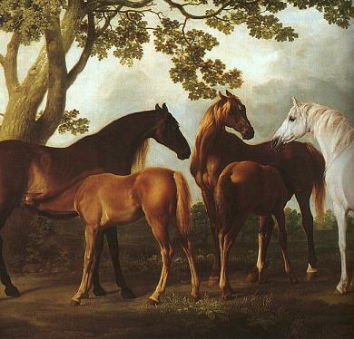 Dafen Oil Painting on canvas -horse003
