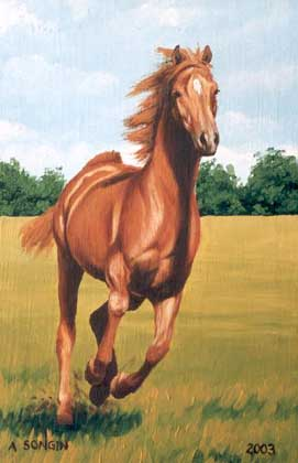 Dafen Oil Painting on canvas -horse023