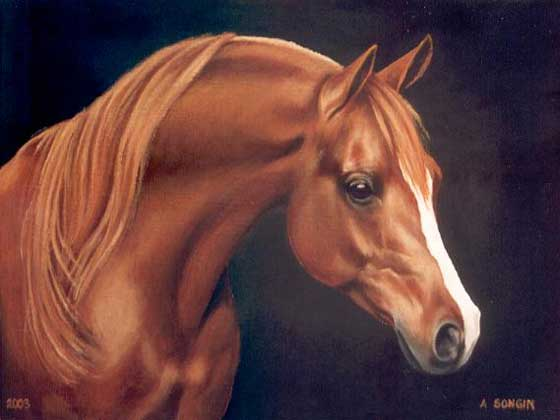 Dafen Oil Painting on canvas -horse025