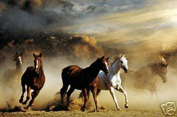 Dafen Oil Painting on canvas -horse045