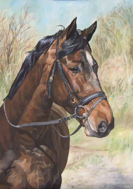 Dafen Oil Painting on canvas -horse080