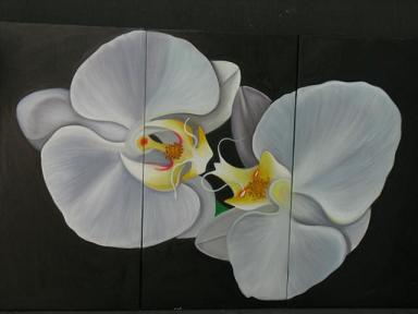 Dafen Oil Painting on canvas white flower -set005
